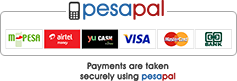 pesapal pay online