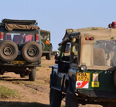 8 Days Kenya Footsteps Classic Safari