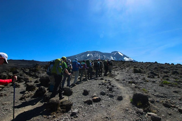 Summit Mt. Kilimanjaro for a Cause