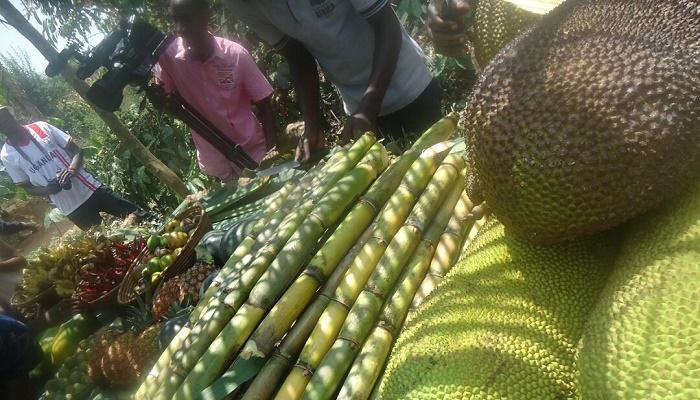 Entanda Cultural tour Uganda
